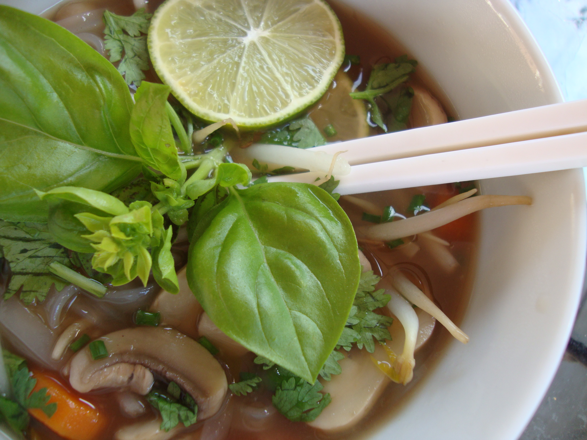 Vegetarian Pho Soup | Cat Can Cook