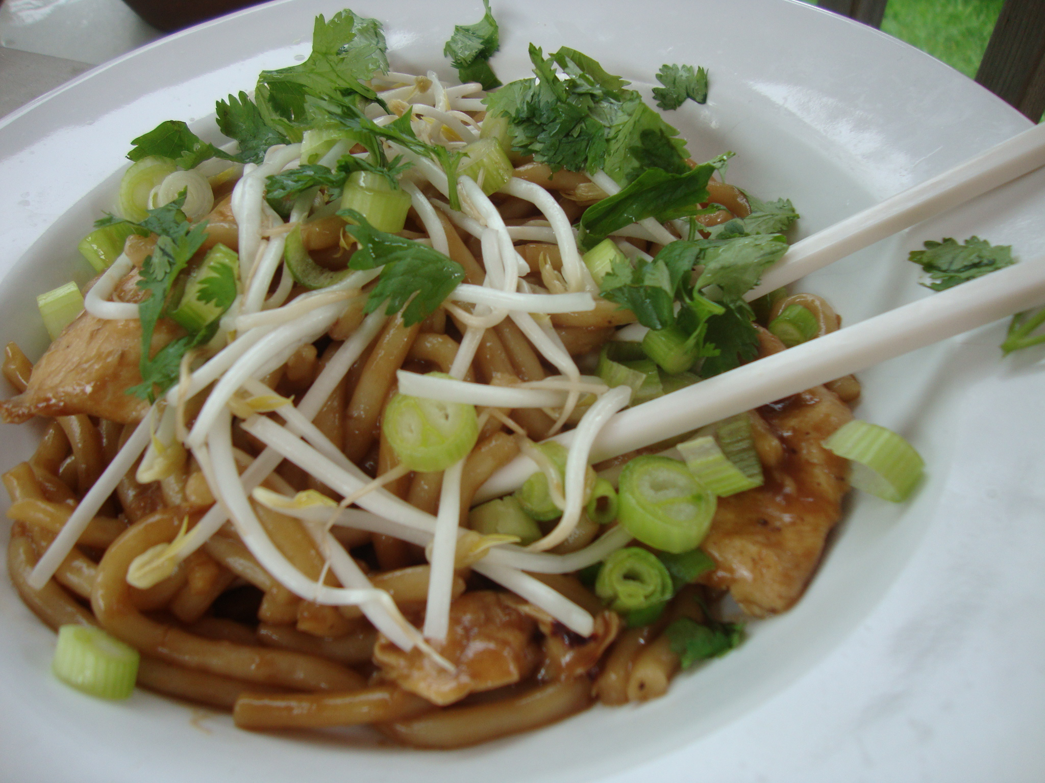 Satay Chicken Udon Noodles | Cat Can Cook