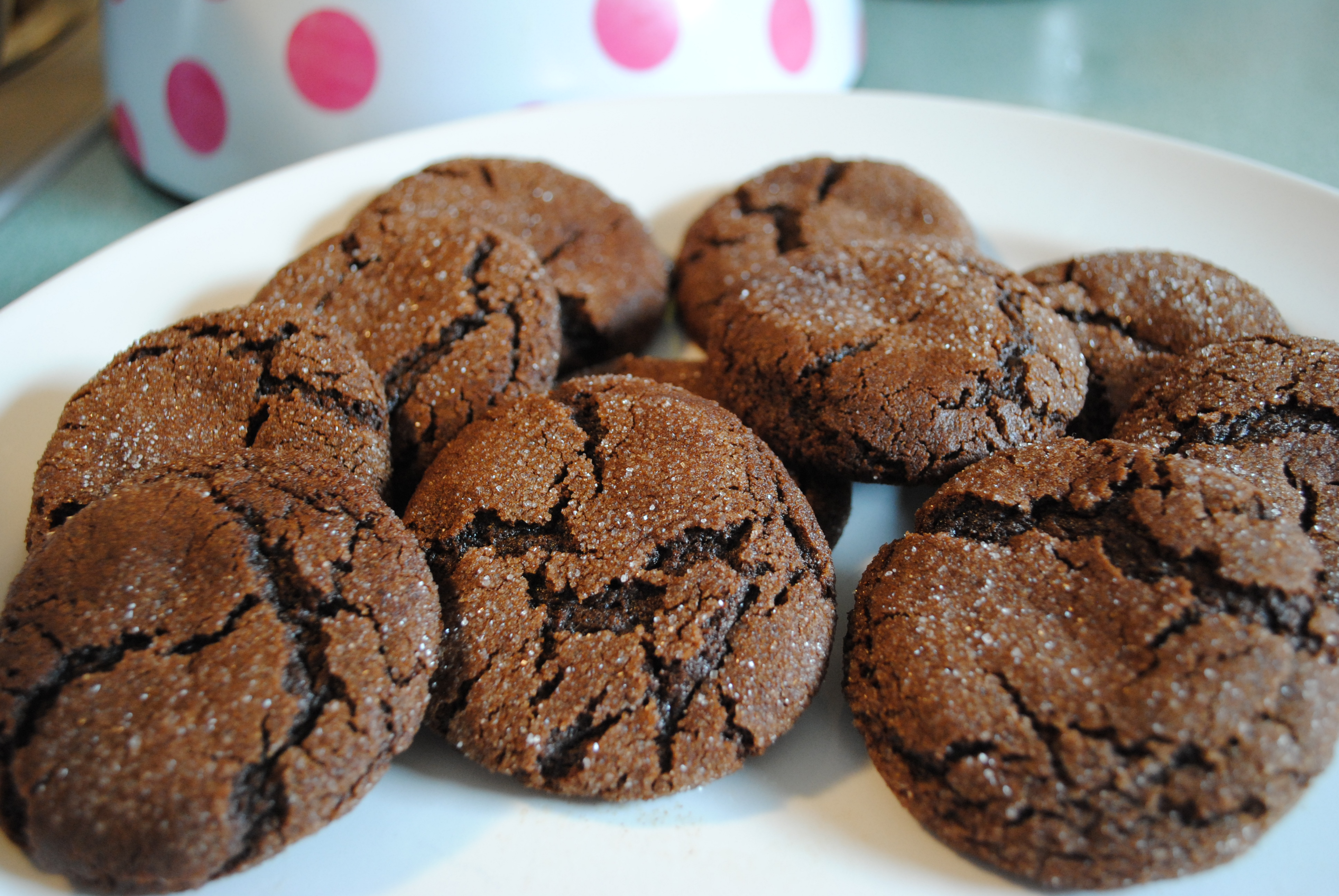 Chocolate Molasses Crinkle Cookies | Cat Can Cook